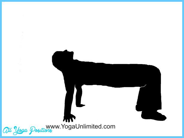 Chakravakasana Pose Yoga_24.jpg