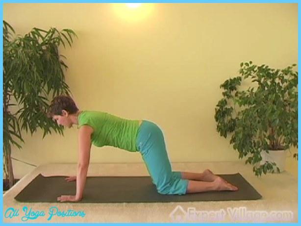 Chakravakasana Pose Yoga_6.jpg