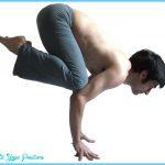 Crane Pose Yoga_5.jpg
