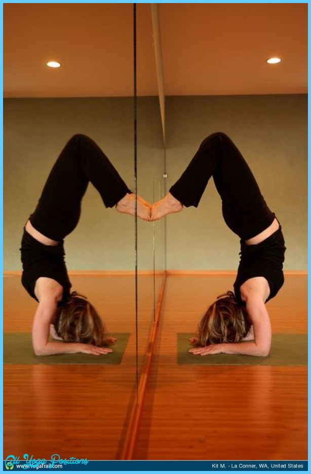 Feathered Peacock Pose Yoga, Forearm Stand _18.jpg