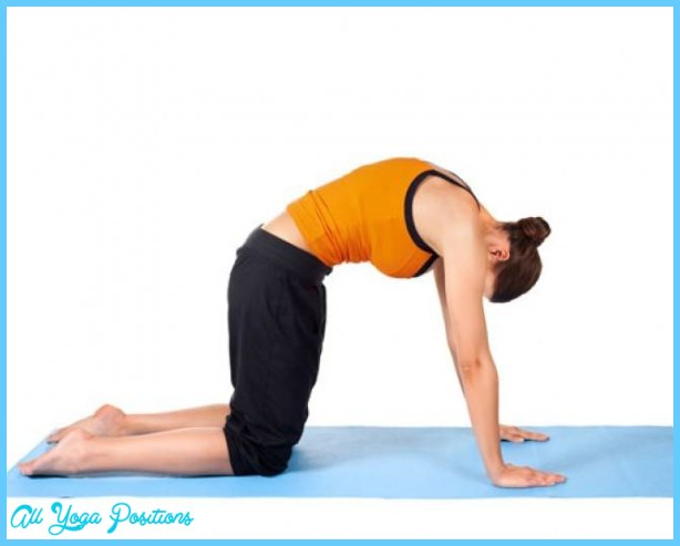 Cat Pose (Marjaryasana)   20 yoga poses to channel your inner animal ...
