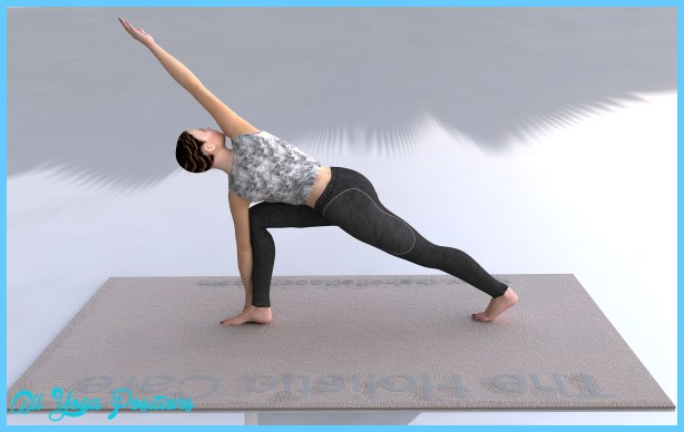 ... enlarge image Parivrtta_Parsvakonasana-Revolved_Side_Angle_Pose_L3.jpg