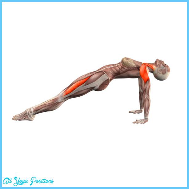 Upward plank pose - Purvottanasana - Yoga Poses | YOGA.com