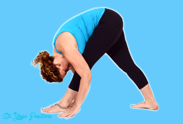 Pyramid Pose Yoga_2.jpg