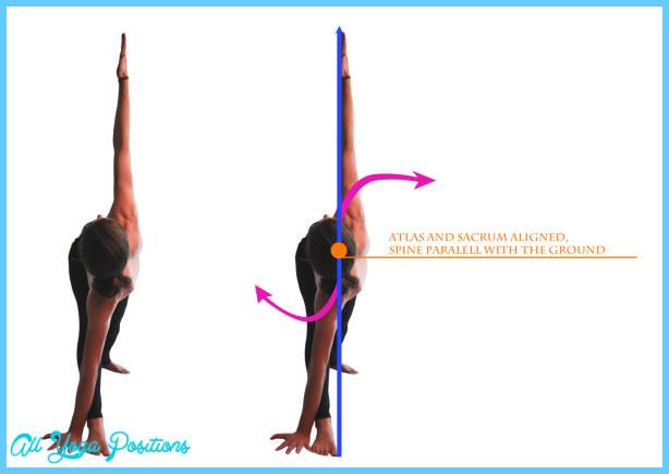 Parivrtta Trikonasana-Revolved Triangle Pose   Asana Project   UP4Yoga