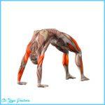 Upward Bow or Wheel Pose Yoga_30.jpg