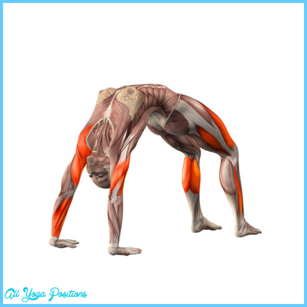 Upward Bow or Wheel Pose Yoga_30.jpg