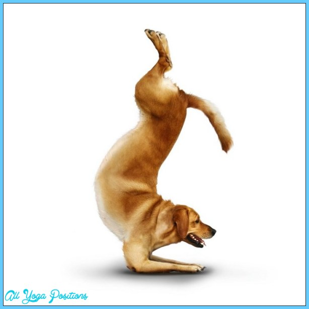 Yoga agora _8.jpg