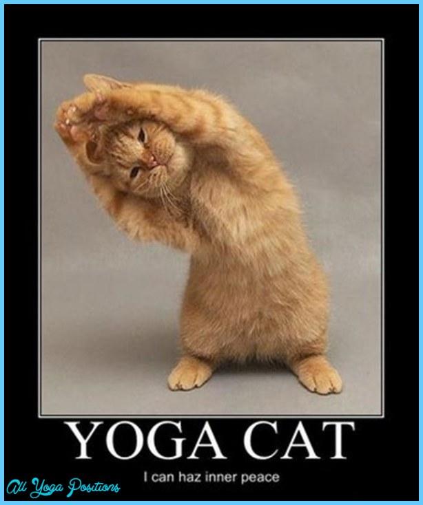 Yoga poses animals _9.jpg