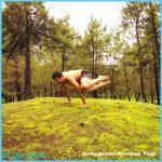 Yoga poses jungle _50.jpg