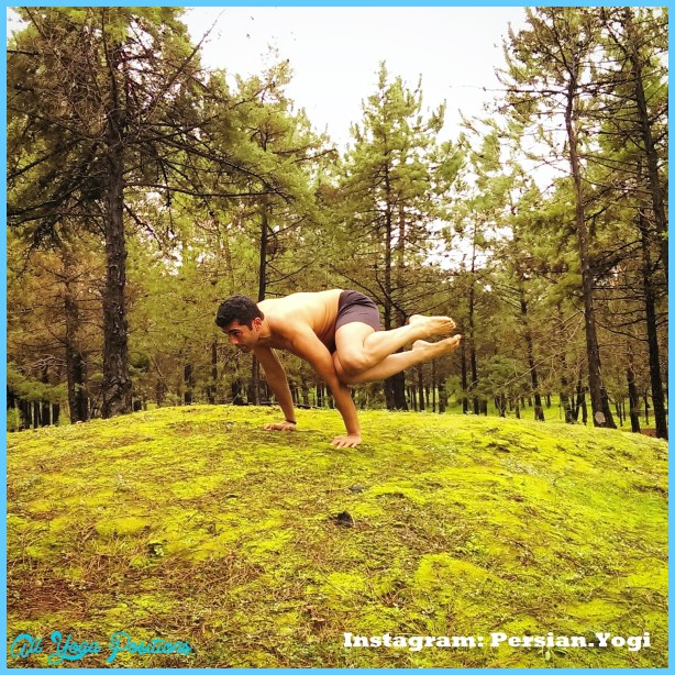 Yoga poses jungle _50.jpg