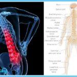 Yoga poses lower back pain _11.jpg