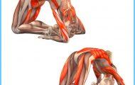 Yoga poses muscles _10.jpg