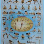 Yoga poster 908 poses _8.jpg