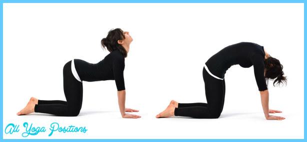 Cow Pose Yoga  _17.jpg
