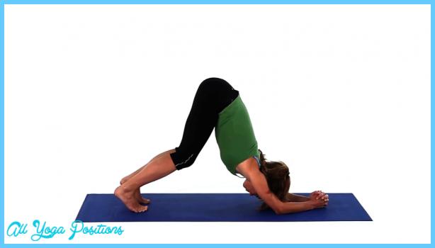Dolphin Plank Pose Yoga_10.jpg