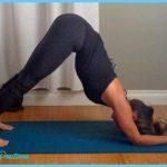 Dolphin Pose Yoga_21.jpg