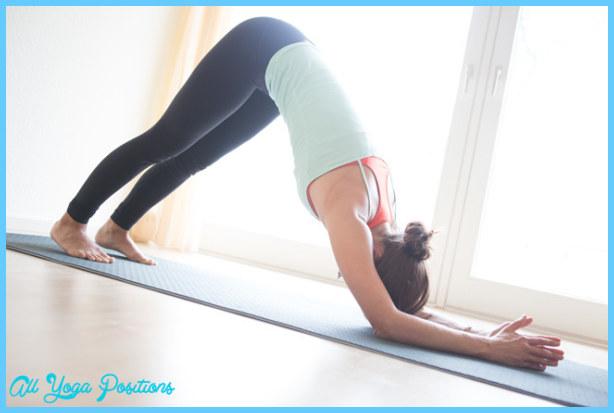 Dolphin Pose Yoga_41.jpg