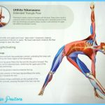 Extended Triangle Pose Yoga _18.jpg