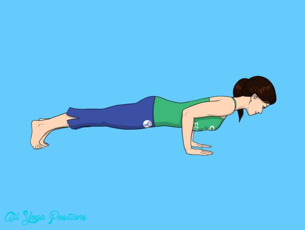 Four-Limbed Staff Pose Yoga _7.jpg