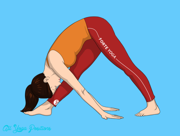 Intense Side Stretch Pose Yoga_1.jpg