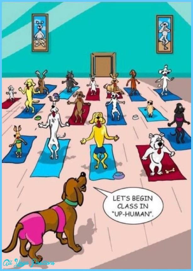 Yoga Jokes Allyogapositionscom