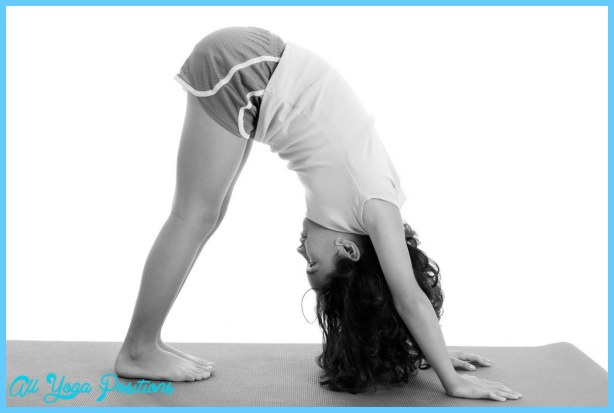 Yoga yoga north _1.jpg