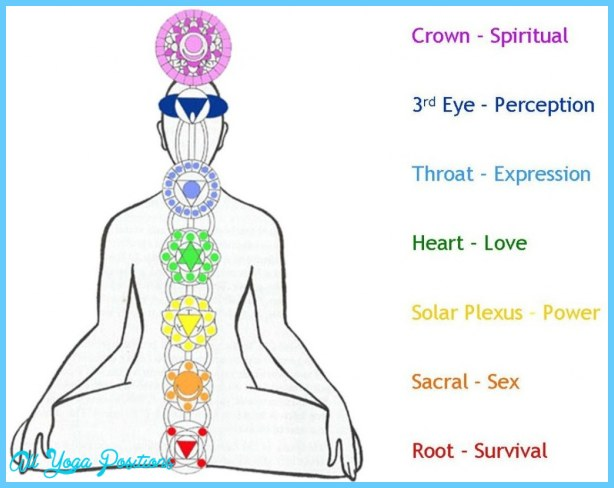 7-chakras-in-the-body-symbols-and-meaning-1024x810-meditationgongs.net_.jpg