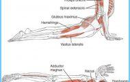 Anatomy of an Asana_8.jpg