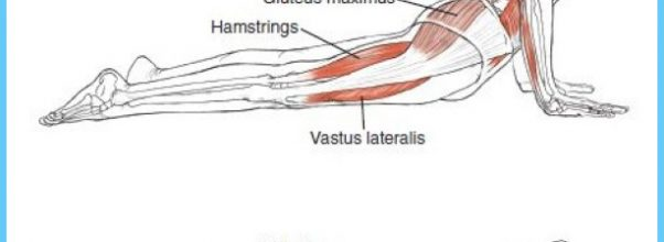 Anatomy And Asana Preventing Yoga Injuries Pdf | Allyogapositions ...