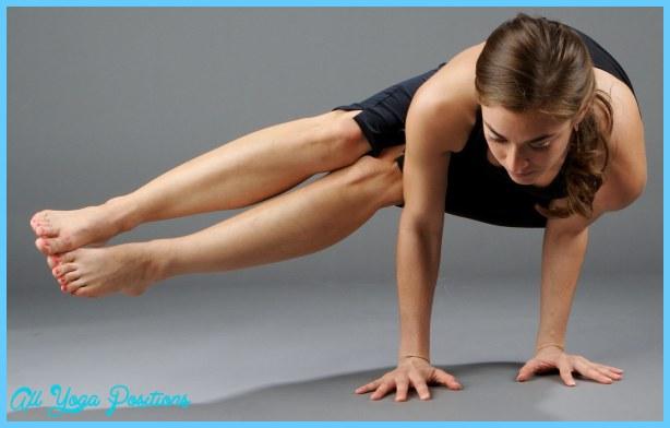 hatha-yoga-pic2.jpg