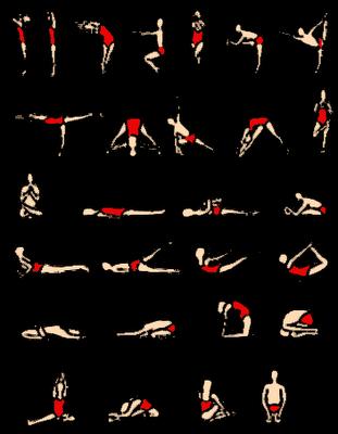 hatha-yoga-poses.gif