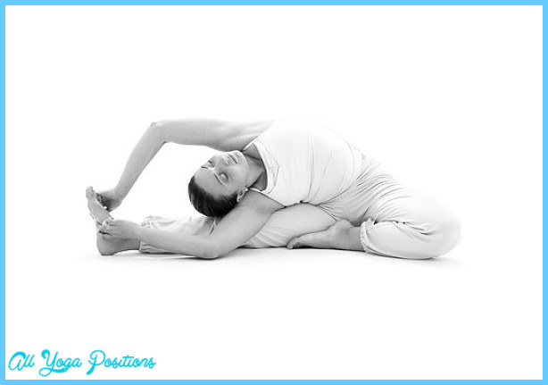 Ashtanga Yoga Poses_18.jpg
