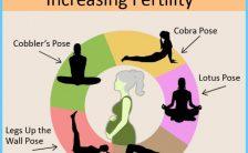 Yoga Poses To Unblock Fallopian Tube_3.jpg