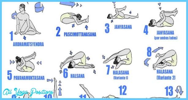 Hatha Yoga Poses_10.jpg