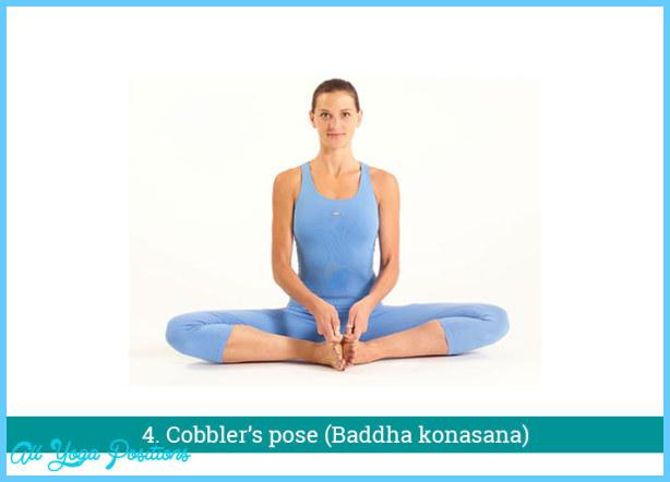 Hatha Yoga Poses_13.jpg