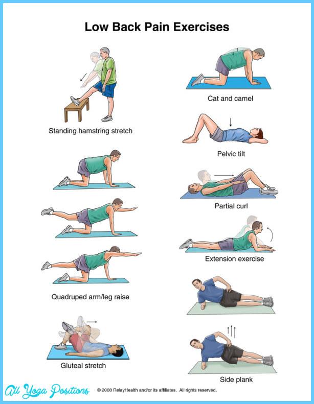 back-pain-exercises2.jpg
