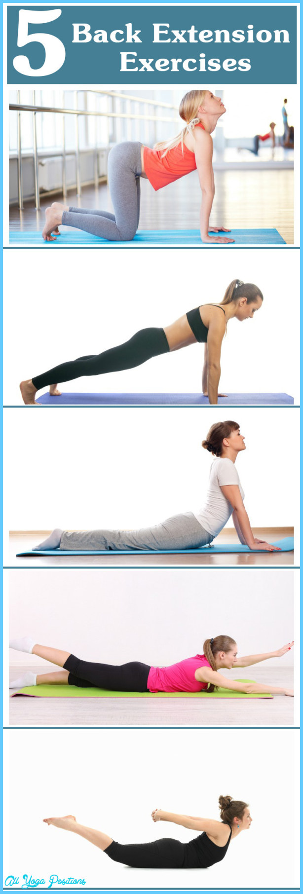 Best-Back-Extension-Exercises.jpg