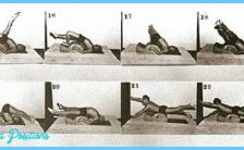 Joseph Pilates Exercises_1.jpg
