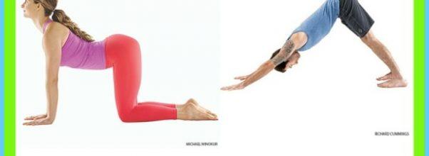 10 Basic Yoga Poses_19.jpg