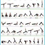 Bikram Yoga Poses Poster_17.jpg