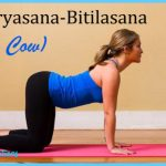 Cat And Cow Yoga Pose_19.jpg