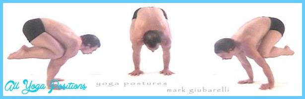 Crane Yoga Pose_10.jpg
