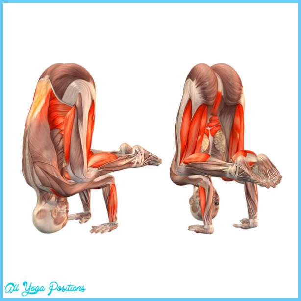 Headstand Build Neck Muscles