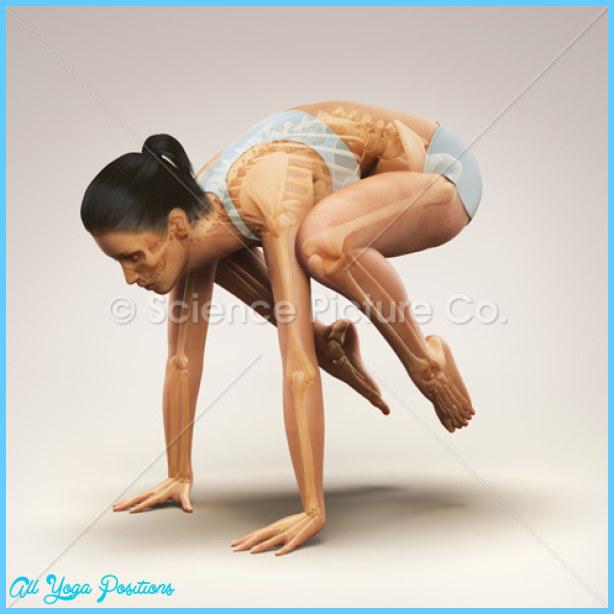 Crane Yoga Pose_19.jpg