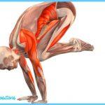 Crane Yoga Pose_3.jpg