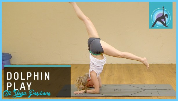 Dolphin Yoga Pose_10.jpg