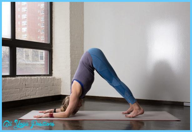 Dolphin Yoga Pose_6.jpg