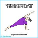Extended Side Angle Yoga Pose_10.jpg