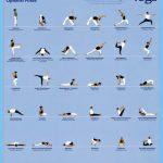 Integral Yoga Poses_8.jpg